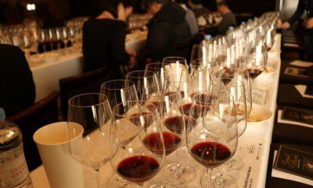 La Chambre d'agriculture de Bordeaux cherche des volontaires pour ses dégustations de vins expérimentaux