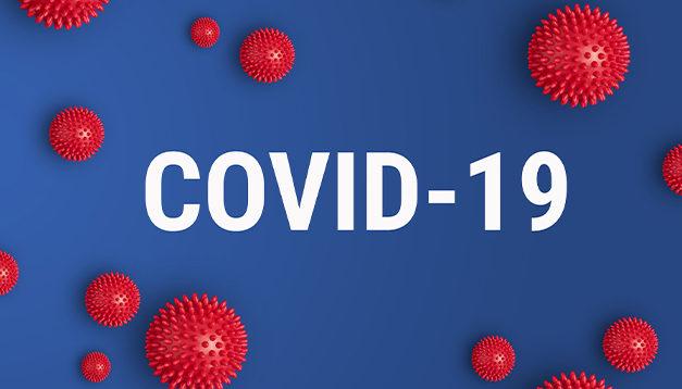La prédominance du variant Anglais du Covid  en France
