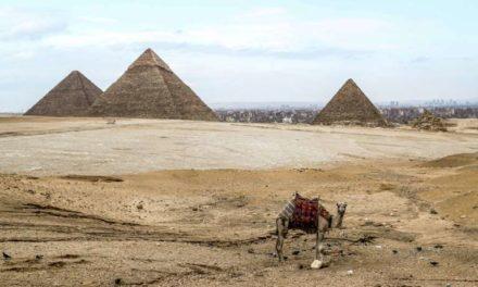 """Elon Musk invité par l'Egypte après son tweet sur """"la construction des pyramides par les extra-terrestres""""s"""