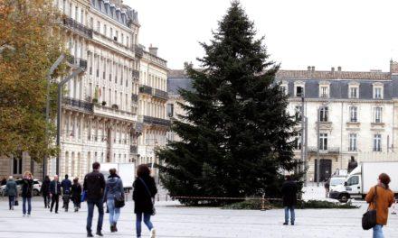 A Bordeaux le Géant sapin de Noël remplacé par un spectacle numérique